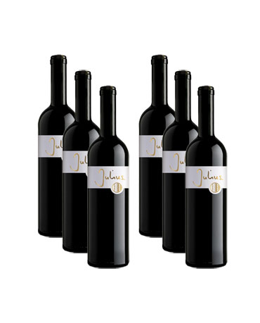 Julius, Ligne d'or rouge Valais AOC, 6x 75 cl
